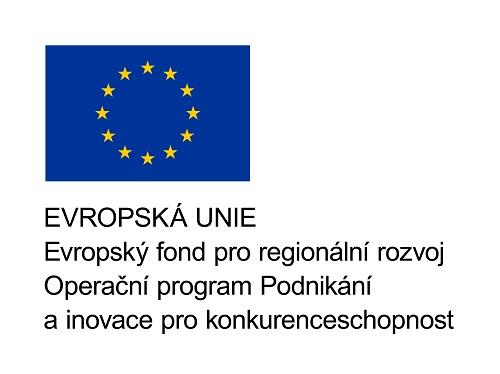 European union project